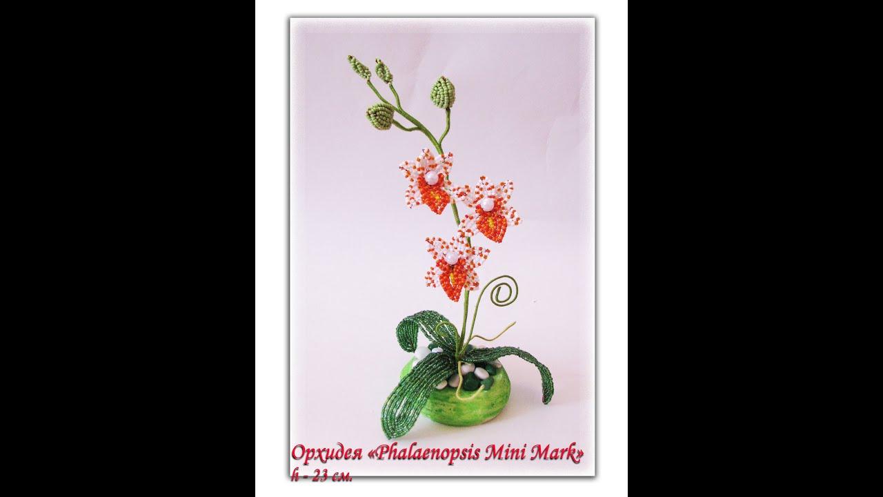 Бисероплетения орхидея схема
