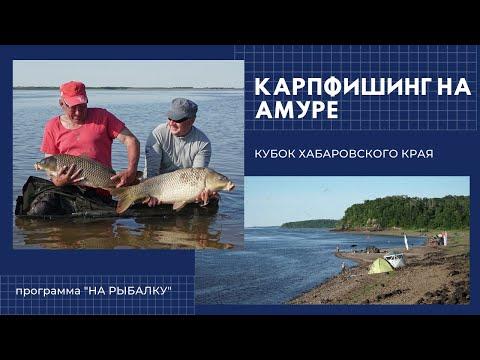 Карпфишинг на Амуре. Кубок Хабаровского края 2018
