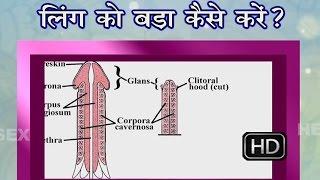 tarike ling long tips  hindi mota panis ling ko mota karne ke nuskhe