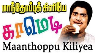 Manthoppu Kiliye Surlirajan Comedy Scenes | மாந்தோப்பு கிளியே காமெடி