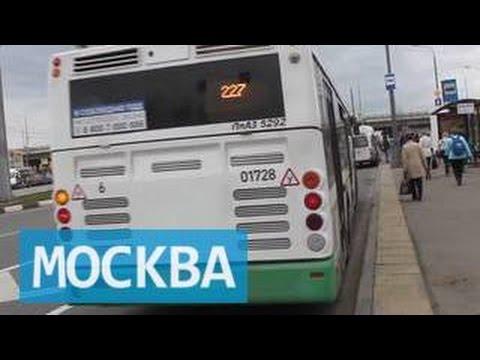 В Москве водитель автобуса зажал старушку дверью и потом ее задавил