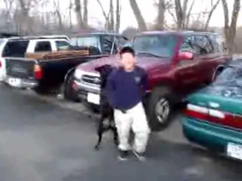 Kid Gets Raped By A Dog video