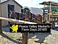 Peace Valley Market Farm Days 2018