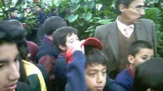 Jardín Botánico en Quito exhibe muestra de plantas carnívoras