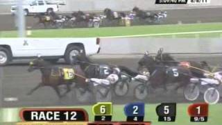 Bettor Sweet - US Pacing Championship division 2