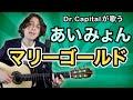 あいみょん(Aimyon)のマリーゴールド(Marigold) - Dr. Capital