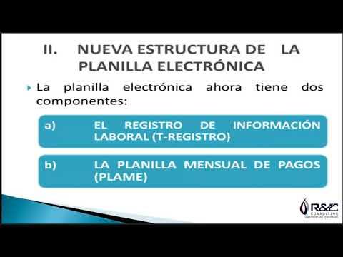 PLANILLAS ELECTRONICAS 01