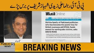 PTI Leader Ali Zaidi reaction on Shahbaz Sharif money laundering exposed by daily mail