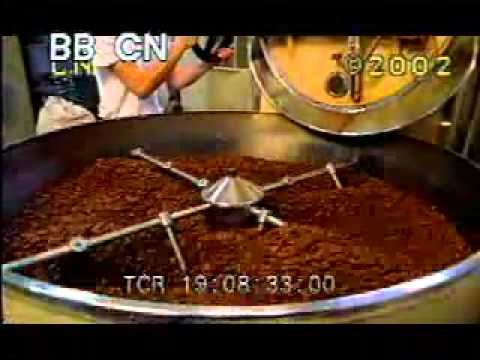 Cocoa Plant Processing - Making Chocolate - Chocolate ...