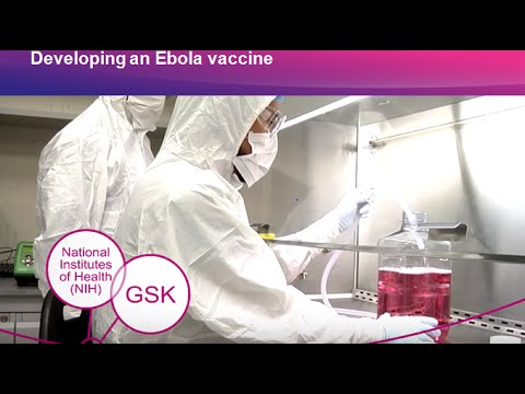 Developing an Ebola vaccine candidate | GSK