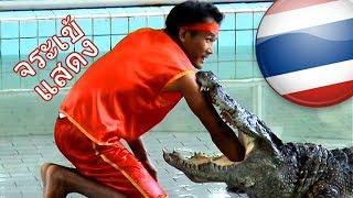 Thailand - Pattaya Crocodile Show / ฟาร์มจระเข้