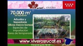 VIVEROS MADRID - VIVEROS RUCAT - VIVERO MADRID