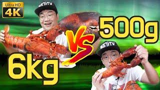 [ENG Sub] 6.2kg Giant Lobster vs 500g Lobster (Korean Food Review)