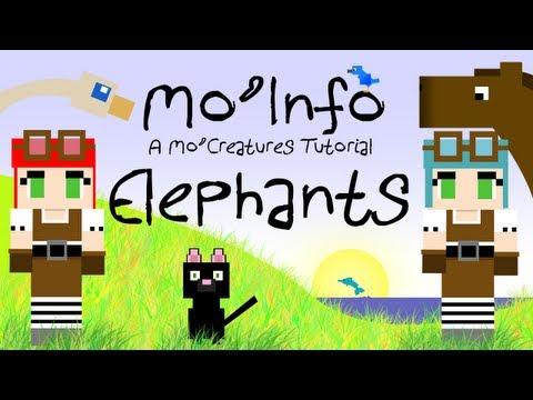 Mo' Info - Elephants