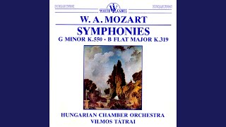 Symphony No. 40 in G Minor K. 550: I. Molto allegro (Allegro assai)