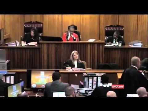 Pistorius Trial: Pistorius describes moment he discovered Reeva Steenkamp in the bathroom