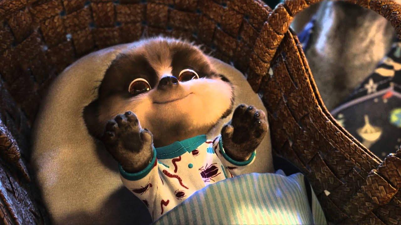 Compare The Meerkat Sergei And I Find Baby Oleg Meerpup