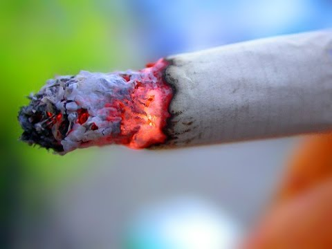 Canadian Smokers Win $12 BILLION From Tobacco Companies