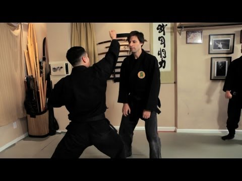 Kenkudaki (Destroying a Punch) | Ninjutsu Techniques Image 1