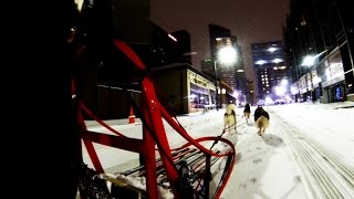 GoPro Downtown Pittsburgh Dog Sledding 2016