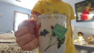 Cindi Bigelow Visits Tea Factories of Sri Lanka
