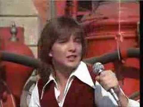Partridge Family - Bandala