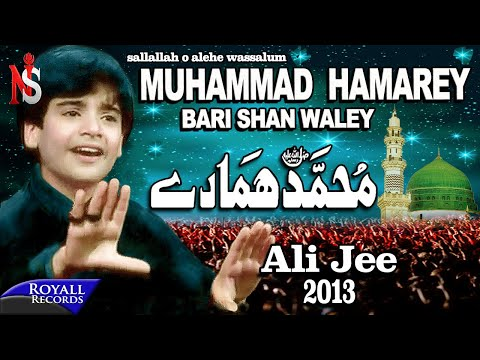 Ali Jee   Muhammad Hamarey   2013   محمد ہمارے