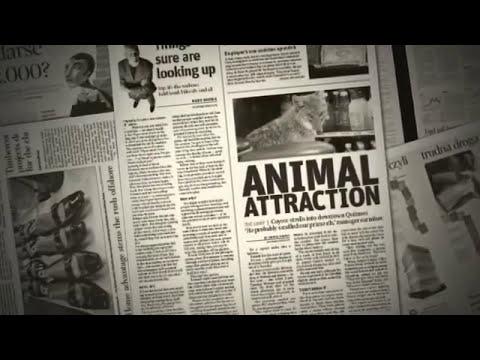 Diseño Editorial-Periódicos!