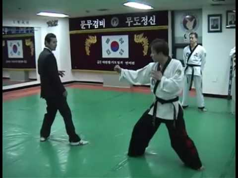 Hapkido Fighting Techniques Image 1