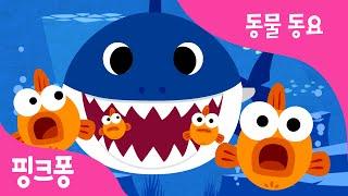 상어 가족 | 아기 상어 | 동물동요 | 핑크퐁! 인기동요