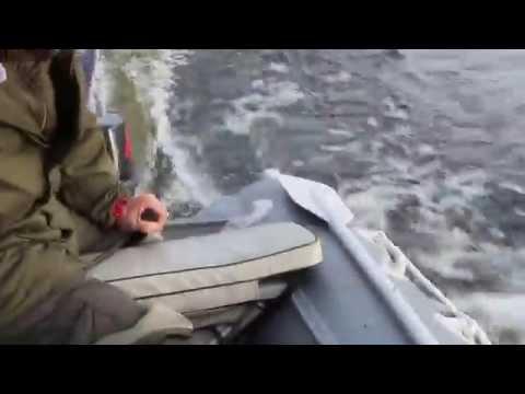 лодка quick stream rx1 335 al