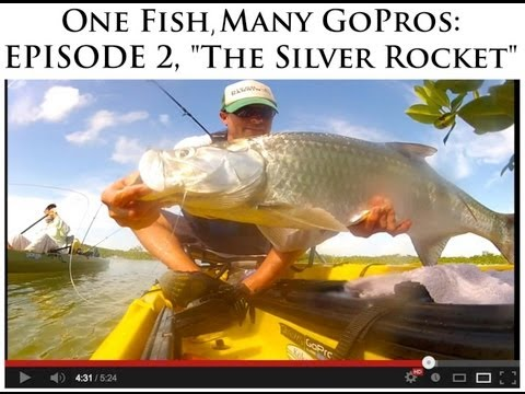 "One Fish, Many GoPros: Episode 2, ""The Silver Rocket"""