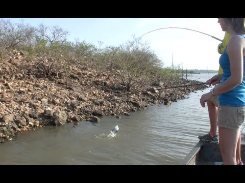 CATCH CRAPPIE IN 12 INCHES OF WATER!
