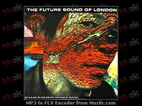 Future Sound of London Essential Mix 1994-05-14 Part1 With Robert Fripp