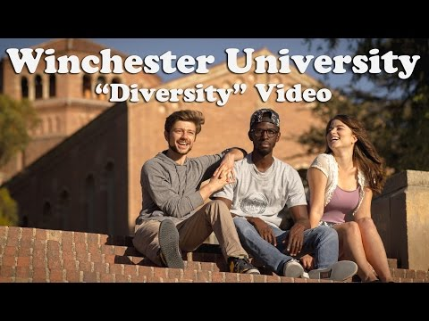 BANNED: Winchester University Diversity Video