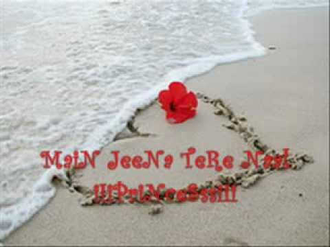Tariq Jee- iIi MaiN JeeNa TeRe Naal iIi-8471078.flv