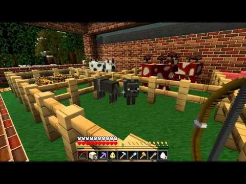 Soartex Fanver Texture Pack Review Minecraft 1.3.1