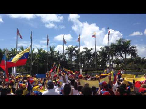 World Protest for a Free Venezuela #30MVamosTodos pt. 4