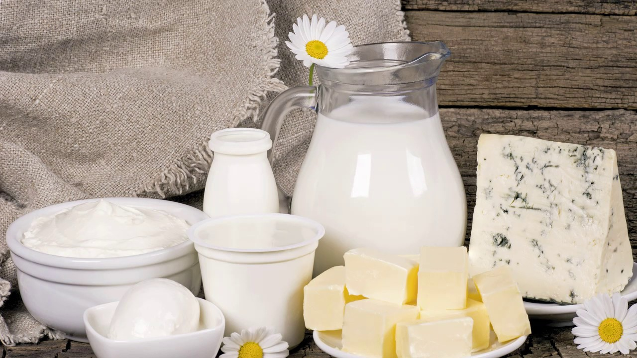 Продукты из молока в домашних условиях