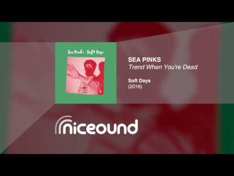 Sea Pinks - Youre Not Happy