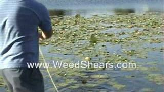 POND WEED CUTTER for removing MILFOIL HYDRILLA CATTAIL LILY PADS