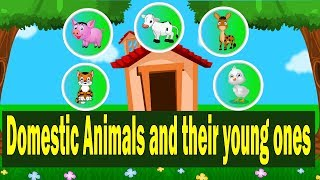 Domestic Animals and their Young Ones | Farm Animals Babies name @ Kid2teentv