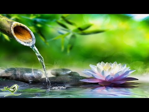 Download Relaxing Piano Music: Sleep Music, Water Sounds, Relaxing Music, Meditation Music ★47🍀