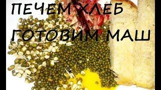 Горчичный хлеб+Как приготовить маш+ Суп, салат+ Кипятим сливки