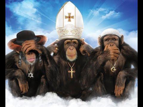 LES ANIMAUX SONT ILS CROYANTS MIRACLE DE DIEU ?!?! PREUVES ET DEBAT part 2/2