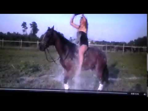 ALS Water Challenge - Horse Scared & Reacts - Horse Bucks Off Rider - Why?