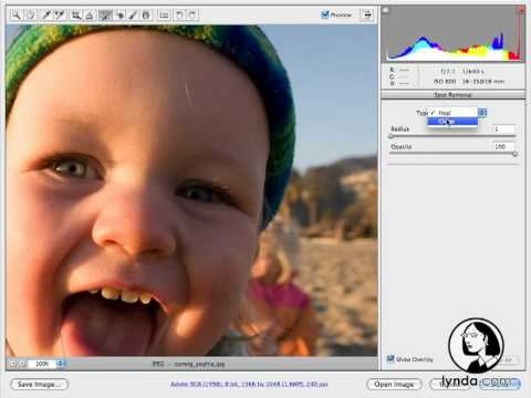 Photoshop CS4 Portrait Retouching Essential Training
