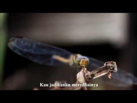 Unic - Doa Istikharah video