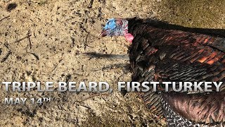 Triple Beard | First Turkey | Spring Thunder