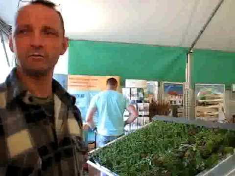 Toiture végétale au salon Eco-consommation du Compa